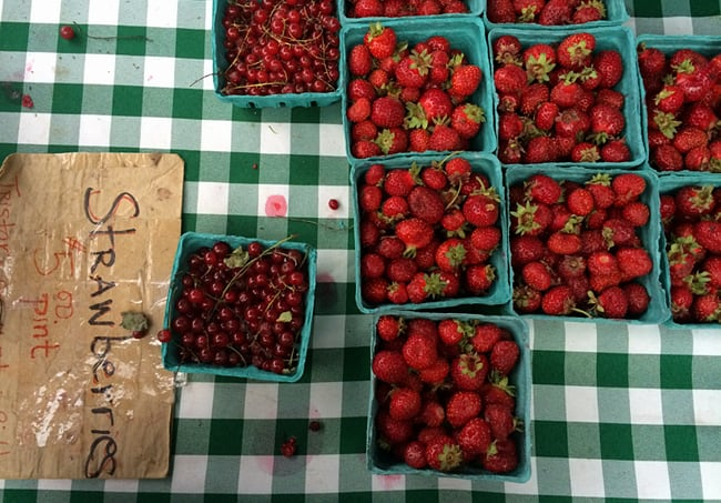Why shop at the farmers market, in layman's terms