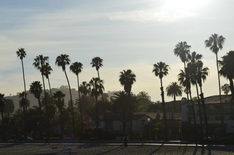 California (5)-1