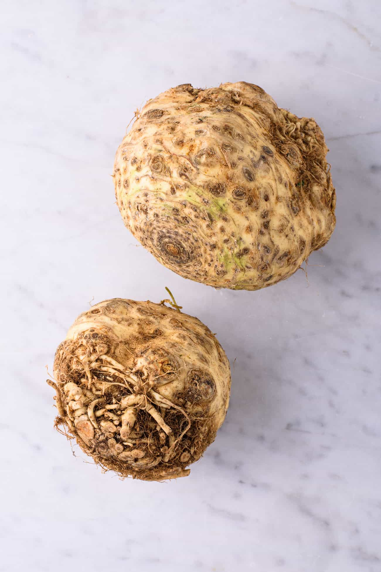 Two celeriac bulbs on a marble table